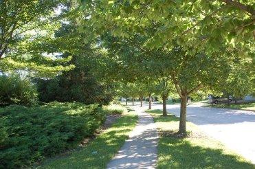 urbantree_scene